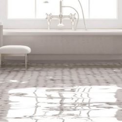 flood and water damage